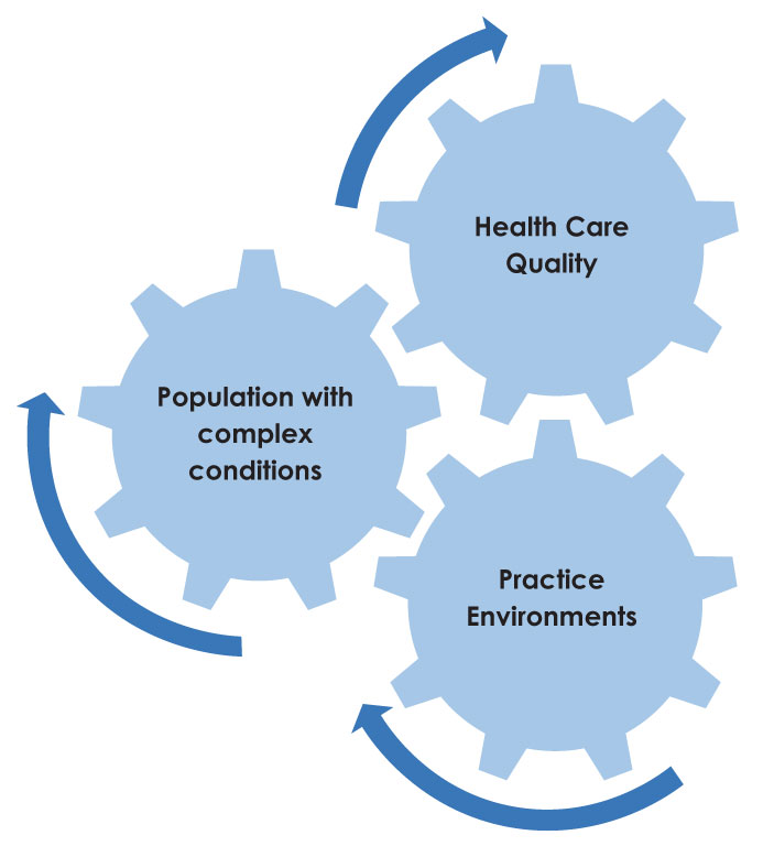 3 gears reading 'populations with complex conditions', 'heath care quality', and 'practice environments'